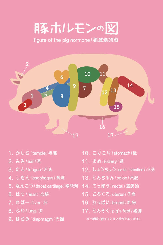 豚ホルモンの図